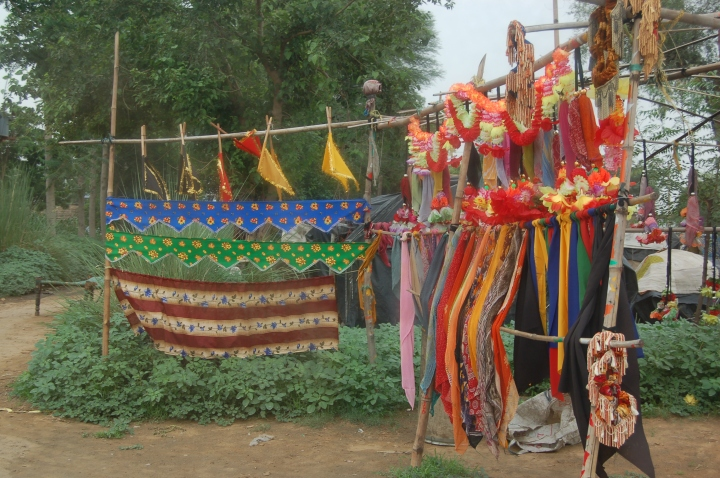 The colours of India: It's not the destination, it's thejourney…